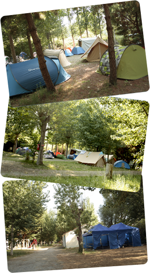Accomodations for groups