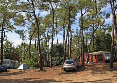 Caravane et toile de tente dans la Pinède