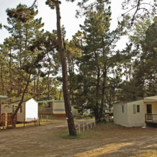 Les allées du camping