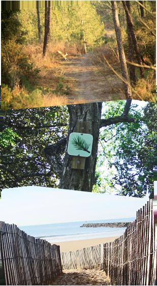 walking trails in Saint Jean de Monts