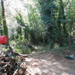 En Septembre : nettoyage du Bosquet