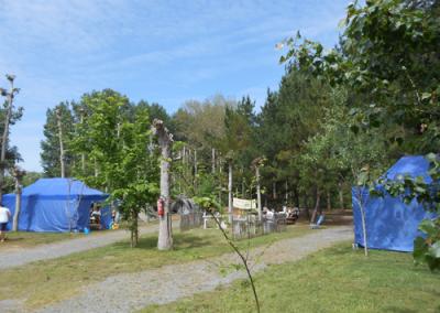 Location de barnums, tables et bancs à la Pointe